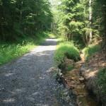 Cesta po dešti 6.7 2013