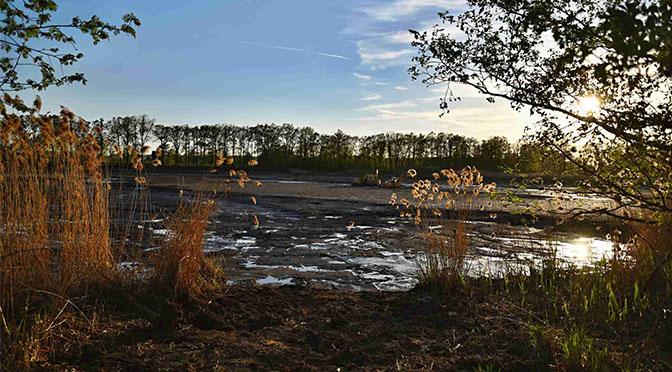 Nový rybník bude odbahněný již letos