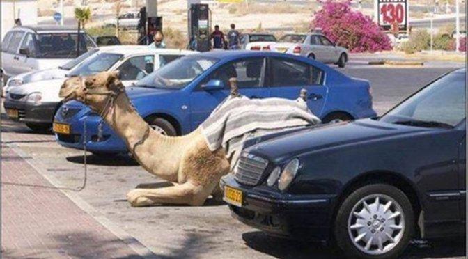 Zase to parkování!